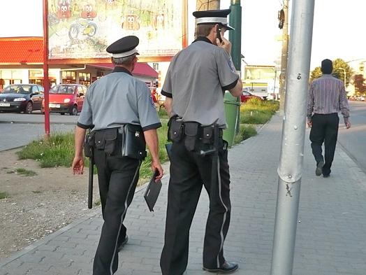 Politia comunitara